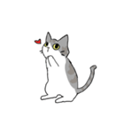 姉弟猫のスタンプ(個別スタンプ:5)