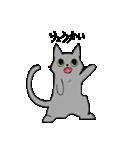 姉弟猫のスタンプ(個別スタンプ:9)