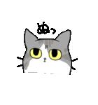 姉弟猫のスタンプ(個別スタンプ:12)