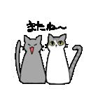 姉弟猫のスタンプ(個別スタンプ:18)