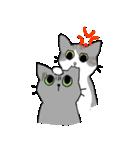 姉弟猫のスタンプ(個別スタンプ:24)