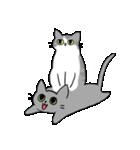 姉弟猫のスタンプ(個別スタンプ:25)
