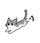 姉弟猫のスタンプ(個別スタンプ:27)