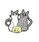 姉弟猫のスタンプ(個別スタンプ:30)