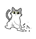 姉弟猫のスタンプ(個別スタンプ:35)