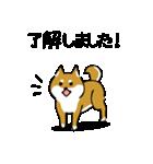 大人可愛い!柴犬のゆる敬語・丁寧語(個別スタンプ:2)