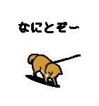 大人可愛い!柴犬のゆる敬語・丁寧語(個別スタンプ:3)