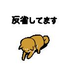 大人可愛い!柴犬のゆる敬語・丁寧語(個別スタンプ:4)