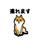 大人可愛い!柴犬のゆる敬語・丁寧語(個別スタンプ:10)