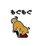 大人可愛い!柴犬のゆる敬語・丁寧語(個別スタンプ:19)