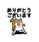 大人可愛い!柴犬のゆる敬語・丁寧語(個別スタンプ:21)