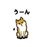 大人可愛い!柴犬のゆる敬語・丁寧語(個別スタンプ:25)