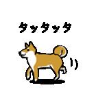 大人可愛い!柴犬のゆる敬語・丁寧語(個別スタンプ:31)