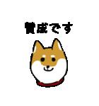 大人可愛い!柴犬のゆる敬語・丁寧語(個別スタンプ:35)