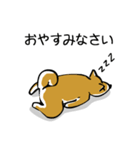 大人可愛い!柴犬のゆる敬語・丁寧語(個別スタンプ:39)