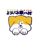 手書きの秋田いっぬ☆ゆるゆる(個別スタンプ:03)