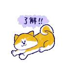 手書きの秋田いっぬ☆ゆるゆる(個別スタンプ:05)