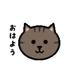 かわいいキジトラ猫の顔(個別スタンプ:01)