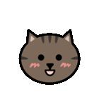 かわいいキジトラ猫の顔(個別スタンプ:03)