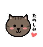 かわいいキジトラ猫の顔(個別スタンプ:05)