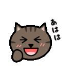 かわいいキジトラ猫の顔(個別スタンプ:16)