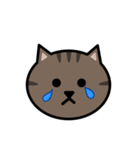 かわいいキジトラ猫の顔(個別スタンプ:17)