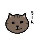 かわいいキジトラ猫の顔(個別スタンプ:21)