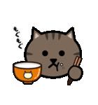かわいいキジトラ猫の顔(個別スタンプ:23)