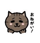 かわいいキジトラ猫の顔(個別スタンプ:27)