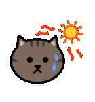 かわいいキジトラ猫の顔(個別スタンプ:31)