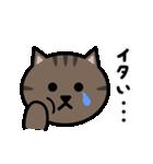 かわいいキジトラ猫の顔(個別スタンプ:33)