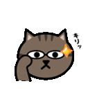 かわいいキジトラ猫の顔(個別スタンプ:34)
