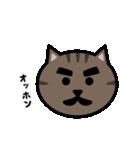 かわいいキジトラ猫の顔(個別スタンプ:36)
