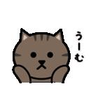 かわいいキジトラ猫の顔(個別スタンプ:37)