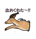 愉快な野性動物たち(個別スタンプ:09)