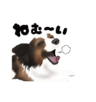 動く!パピヨン(個別スタンプ:5)
