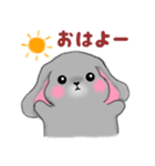 たれ耳うさぎさん☆ホーランドロップイヤー(個別スタンプ:01)
