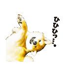 今日も柴犬といっしょ(個別スタンプ:32)