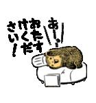 こぐまのケーキ屋さん(個別スタンプ:37)