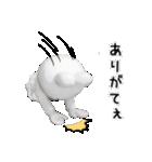 すこぶる動くウサギ【実写版】(個別スタンプ:9)