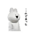 すこぶる動くウサギ【実写版】(個別スタンプ:21)