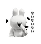 すこぶる動くウサギ【実写版】(個別スタンプ:24)