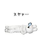 すこぶる動くウサギ【実写版】(個別スタンプ:32)