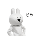 すこぶる動くウサギ【実写版】(個別スタンプ:37)