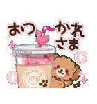 トイプードルの日常【夏♪】(個別スタンプ:05)