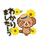 トイプードルの日常【夏♪】(個別スタンプ:11)