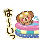 トイプードルの日常【夏♪】(個別スタンプ:12)