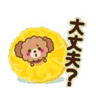 トイプードルの日常【夏♪】(個別スタンプ:17)