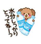 トイプードルの日常【夏♪】(個別スタンプ:18)