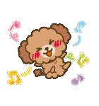 トイプードルの日常【夏♪】(個別スタンプ:27)